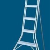 ladder384
